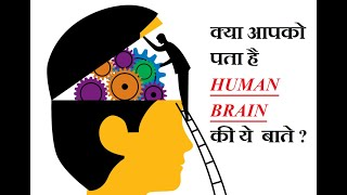 Brain Facts | 12 interesting Human Brain facts Everyone should know this | Mind Blowing Facts