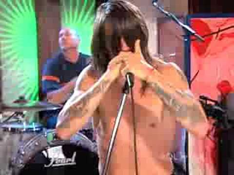Red Hot Chili Peppers- Tell Me Baby (studio)