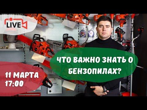 Все, что нужно знать о бензопилах: выбор оборудования, работа двигателя, правильная эксплуатация