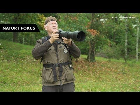 Natur i Fokus med Arne Berneklint