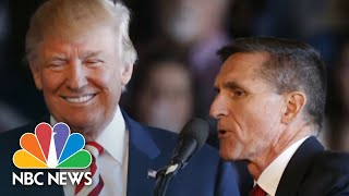 Trump Pardons Former National Security Adviser Michael Flynn | NBC Nightly News