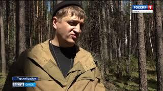В деле о незаконных вырубках леса в Тарском районе может произойти крутой поворот