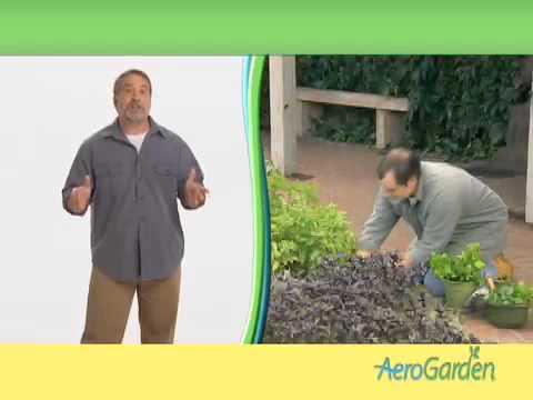 AreoGarden Gardener 60 second spot