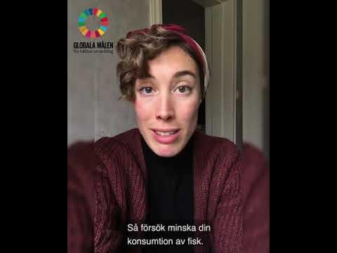 """Globala Målen: Vad kan du och jag göra? - Mål 14 - """"Hav och Marina Resurser"""""""