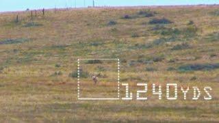 Best of the West Kill Reel - 2017 long range kill shots