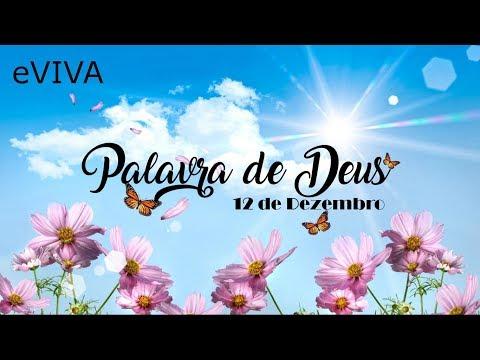 PALAVRA DE DEUS PARA HOJE 12 DE DEZEMBRO eVIVA MENSAGEM MOTIVACIONAL PARA REFLEXÃO DE VIDA