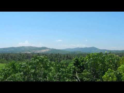 Huerta Orgánica con Energía del Sol y Viento