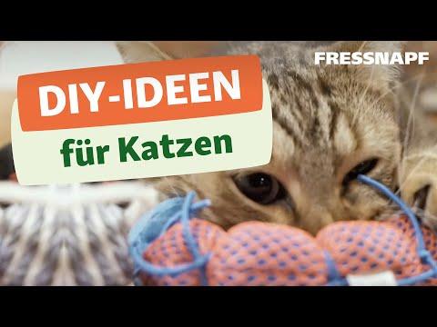 DIY - 3 tolle Geschenkideen für eure Katze