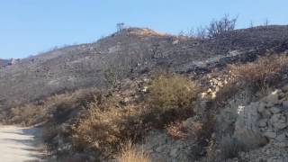 Fire 2016 Sylmar Newhall Hiking Trail