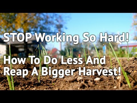 How To Work Less But Reap A Bigger Harvest - Christian Business Academy