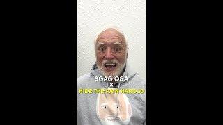 9GAG Q&A x Hide the Pain Harold