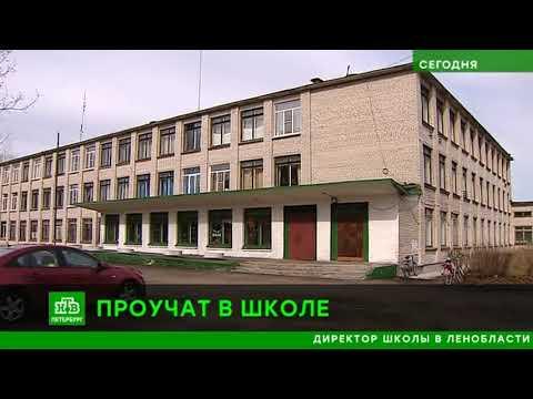 В Тосненском районе по материалам проверки прокуратуры возбуждено уголовное дело о служебном подлоге