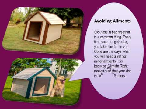 Air Conditioned Dog Houses – Purpose and Uses. Buy Now.