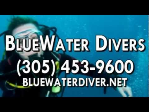 SCUBA Instructor, Scuba Diving in Key Largo FL 33037