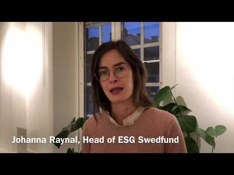 How Swedfund works with Sustainable Development Goal 16.5 Anti-corruption