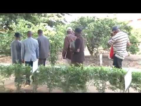 VISITE D'UNE DELEGATION DE LA SIERRA LEONE ET DE LA COMMUNAUTE CATHOLIQUE DU CENTRE SONGHAI