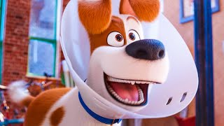 Max And Duke Go On A Roadtrip - THE SECRET LIFE OF PETS 2 Trailer (2019)