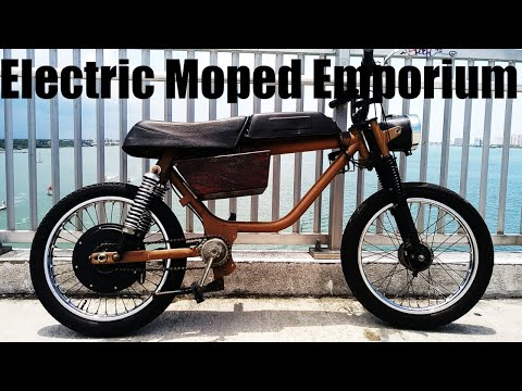 I Homebuilt this Electric Moped Ebike