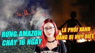 Toàn cảnh rừng Amazon cháy 16 ngày : Lá phổi xanh đang bị huỷ diệt !