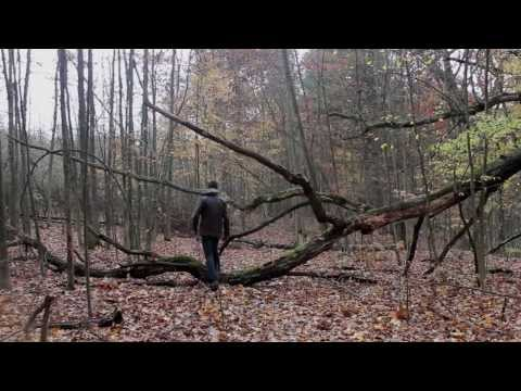 Radioactive - Imagine Dragons: Music Video
