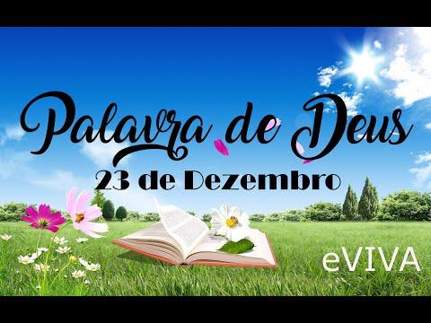 PALAVRA DE DEUS PARA HOJE 23 DE DEZEMBRO eVIVA MENSAGEM MOTIVACIONAL PARA REFLEXÃO DE VIDA
