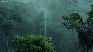 Relaxing Music & Soft Rain  Sleep Music, Calma Piano Music, Healing Music, Peaceful Music ★149