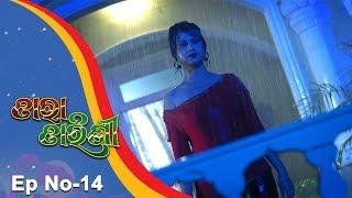 Tara Tarini | Full Ep 14 21st Nov 2017 | Odia Serial – TarangTV