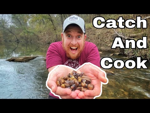 Catch Clean Cook! CLAM DIGGING! Day 3 of 7 Day Subscriber Survival Challenge Texas