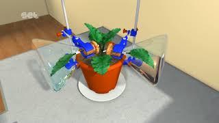 Potassium Hydroxide KOH Experiment