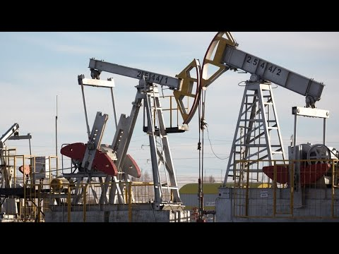Oil Will Break Out of Range to the Upside: Vanda Insights