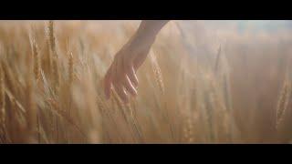 【HD】譚松韻-我在 [Official Music Video] 官方完整版MV