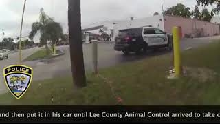 Cape Coral Police Officer Rescues Lost Dog