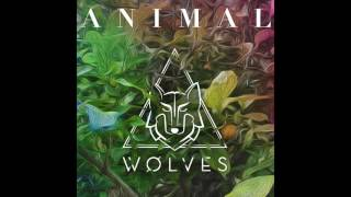 """WOLVES - """"Animal"""" (Official Audio)"""