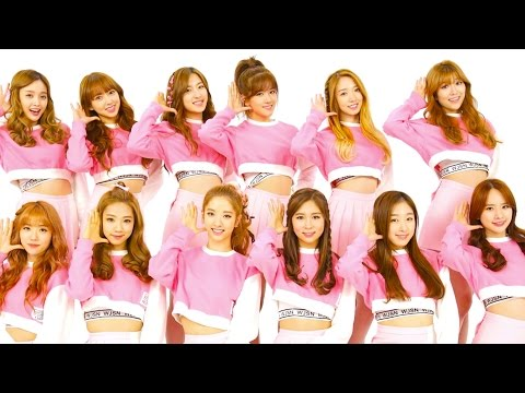 KPOP GIRL GROUP STARVED BY CEO?