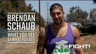 Brendan Schaub: What You See Is What You Get