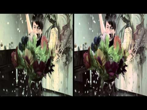 Magicworld 3D [ stereoscopic 3D , 3DPLAN ]