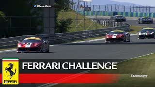 Ferrari Challenge Europe – Budapest 2017, Coppa Shell Race 1