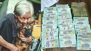 Con tr.ai ru.ồ ng b.ỏ, mẹ g.ià nuôi chó cho bớt c.ô qu.ạ nh thì chính nó giúp bà trở thành tỷ phú