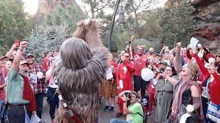Star Wars Life Day Celebration In Galaxy's Edge - Disneyland Holiday with Chewbacca & Boba Fett