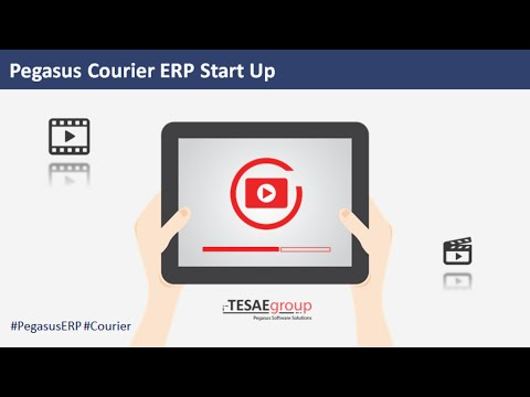 Pegasus Courier ERP Start Up