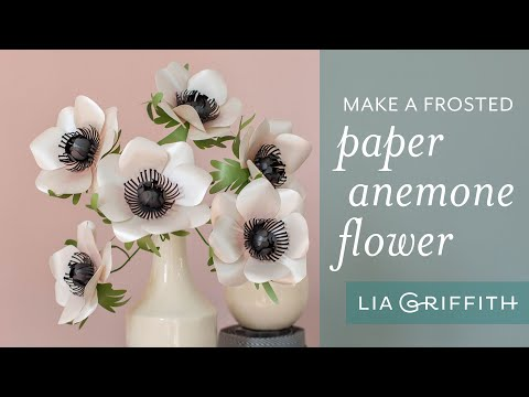 Frosted Paper Anemone
