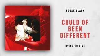 Kodak Black - Could Of Been Different (Dying To Live)