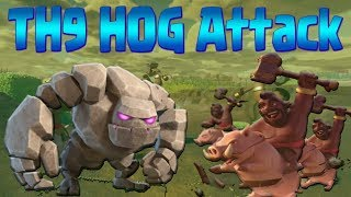 HOW TO HOG TH9 | GoHo & GoHoBo Attack Strategy | Clash of Clans War