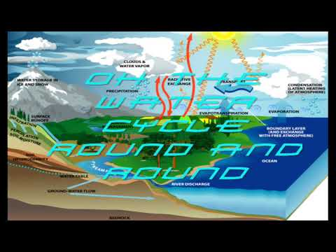 COOL Water Cycle Song  Lyrics