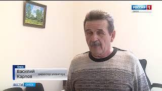 Омские перевозчики зерна вынуждены сутками простаивать в очереди на элеватор