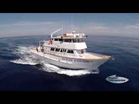 "Angler Chronicles | Ocean Odyssey ""Owner Hook School"""