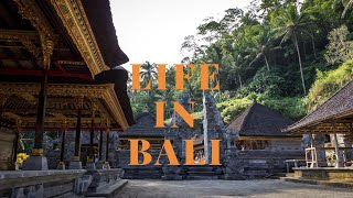 Life in Bali - Babe hangs with Russell Simmons + The Best Vegan Ice Cream + Bali is making me sick