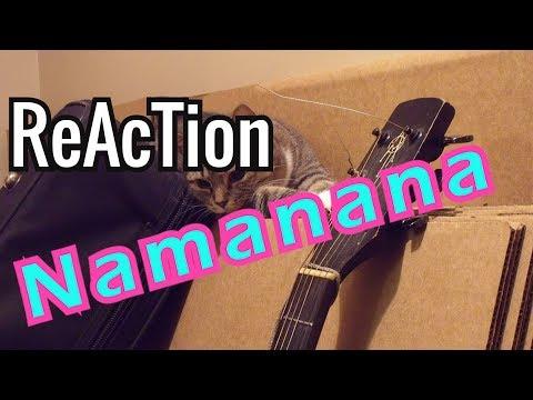 Reaction to LAY 레이 'NAMANANA' MV // Review
