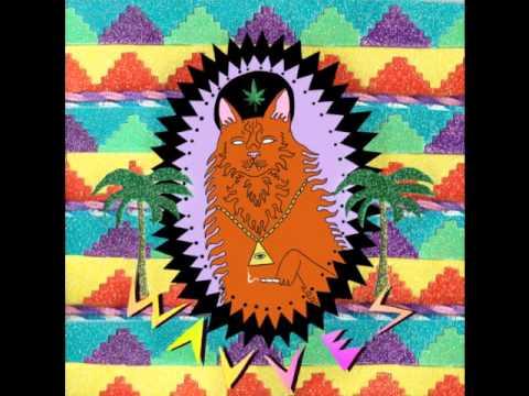 Wavves - King Of The Beach (Full Album)