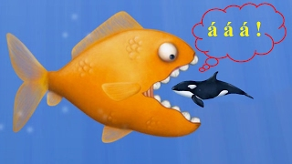 Tasty Blue: Cá Vàng Ăn Hết Mọi Thứ Không Ngán Thứ Gì !